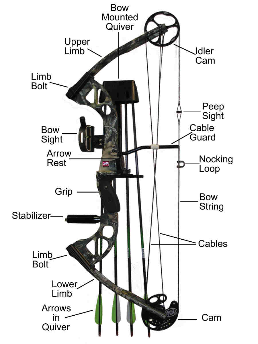 The compound bow and its parts